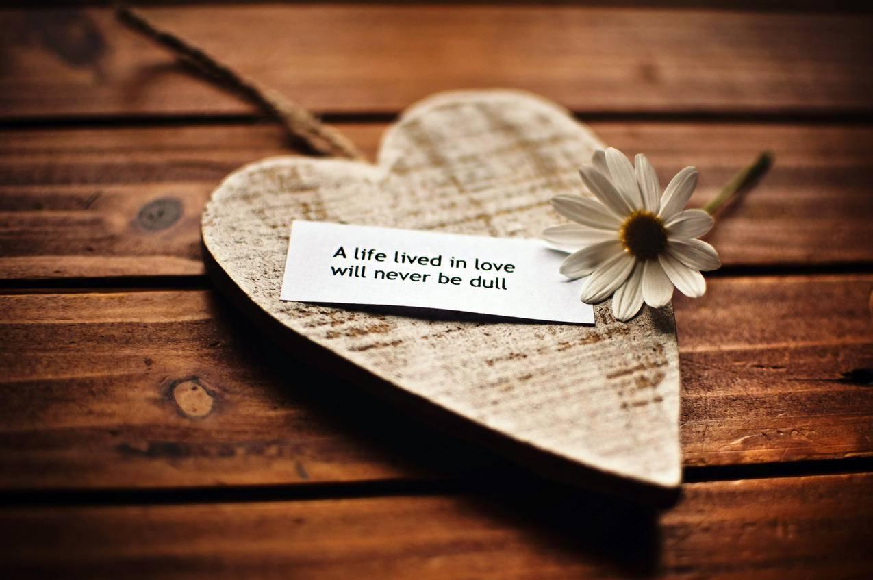爱心,花,短语,唯美图片