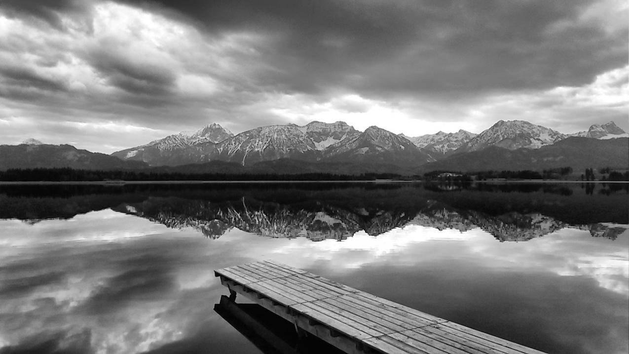 海,黑白,黎明,风景免费照片