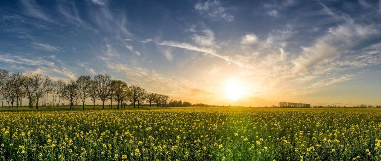 黎明,风景,自然,天空cc0可商用高清大图