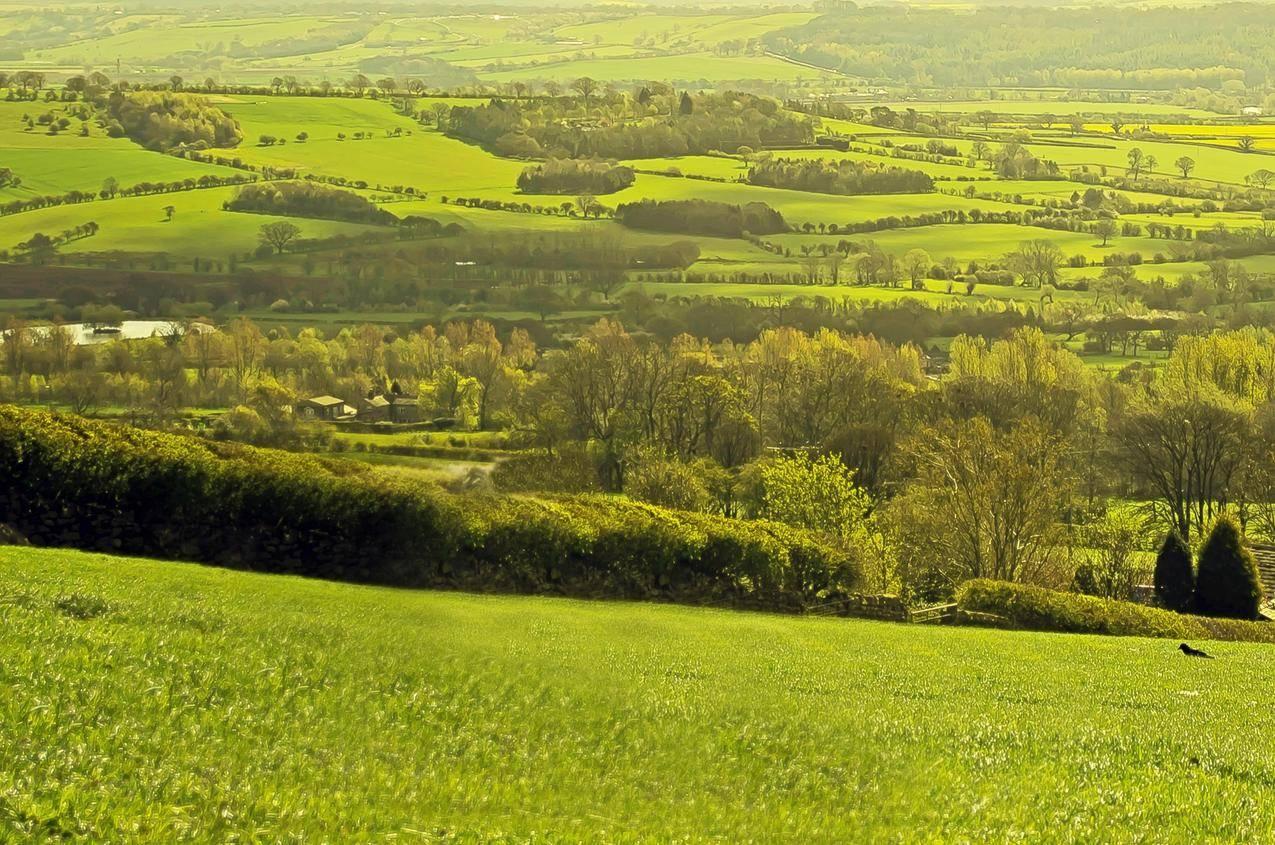 英国北约克郡平原田园风光图片
