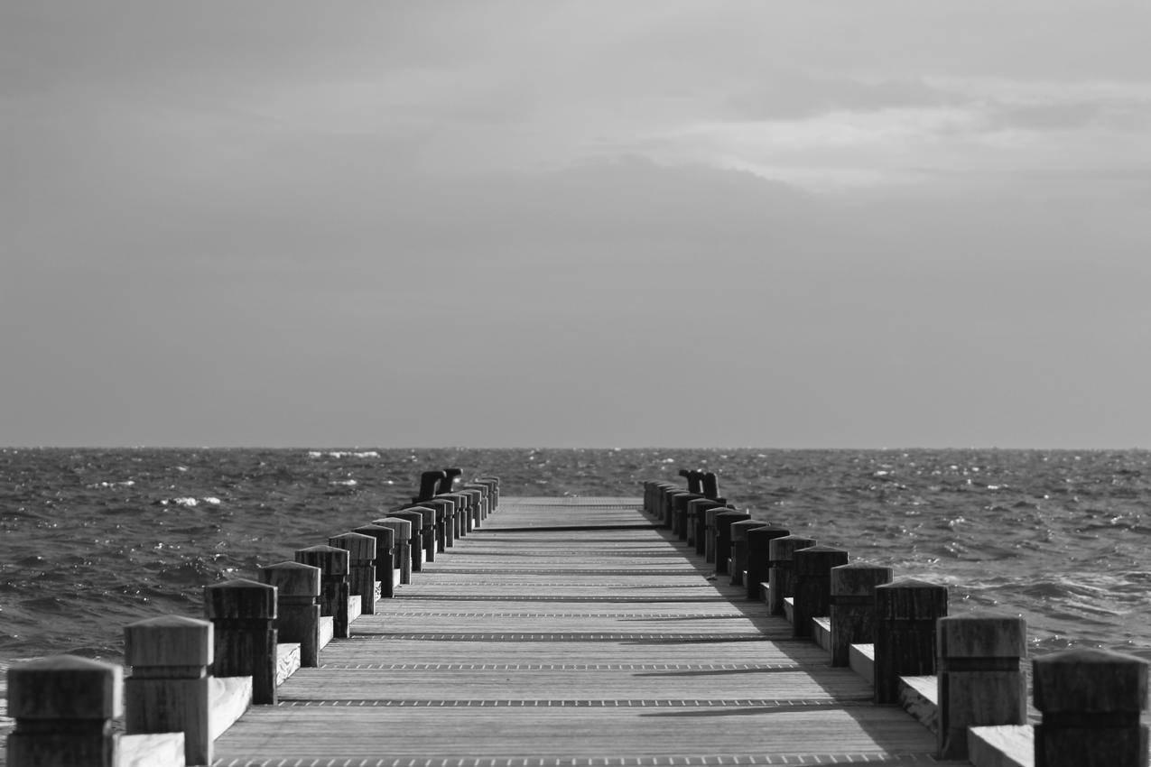 海洋,黑白,天空,沙滩免费照片