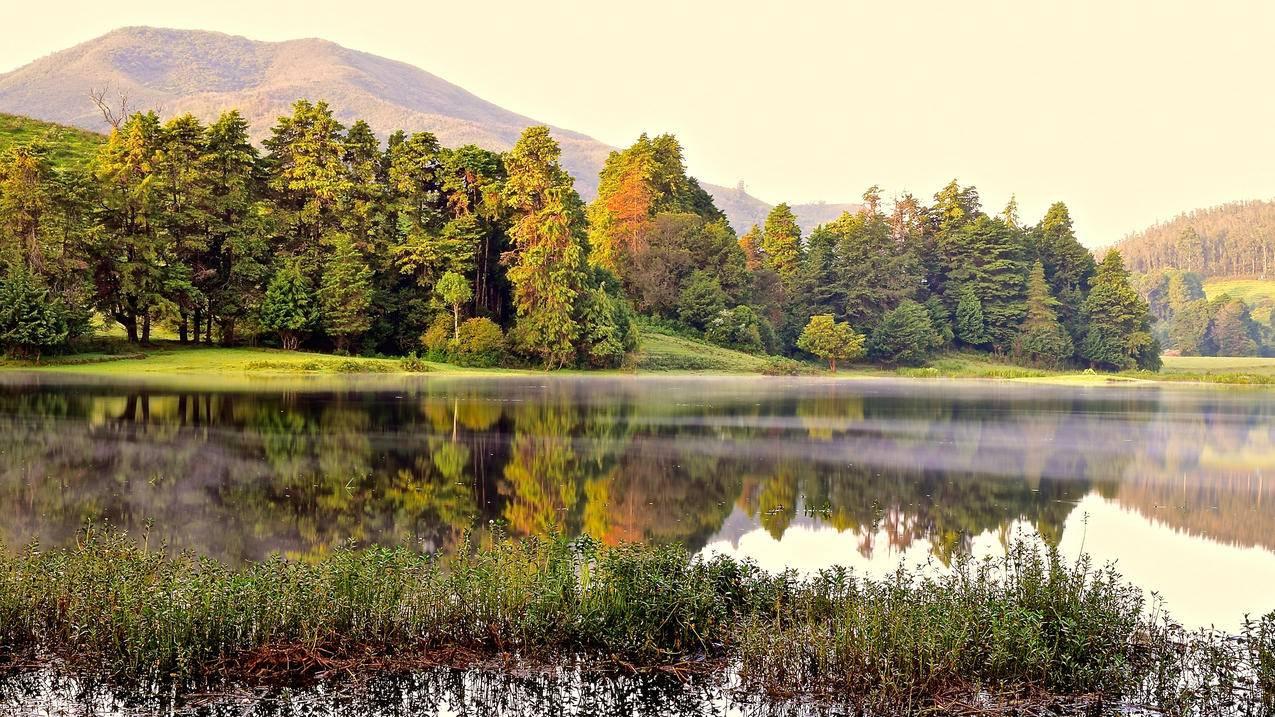 黎明,湖边,4K风景壁纸
