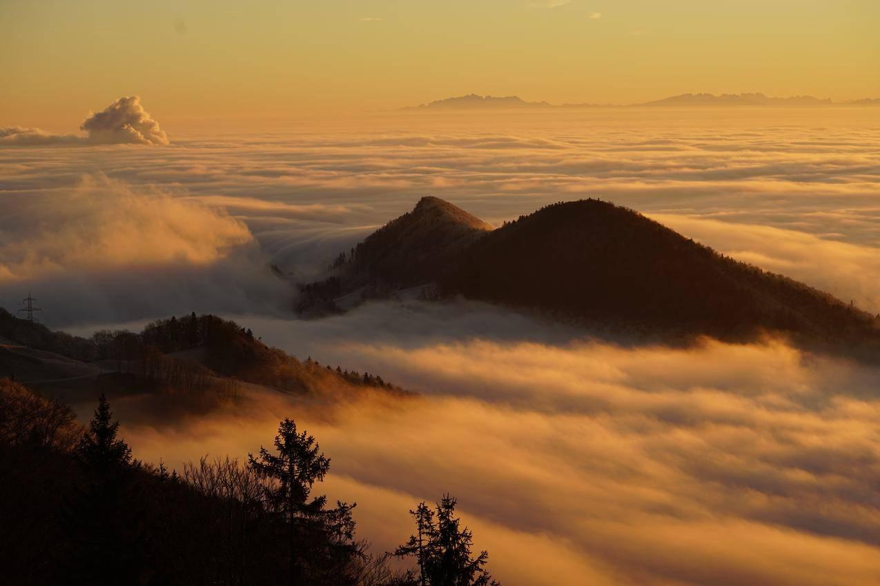 霍姆伯格,云,塞尔瓦海洋,雾之海,8K风景壁纸