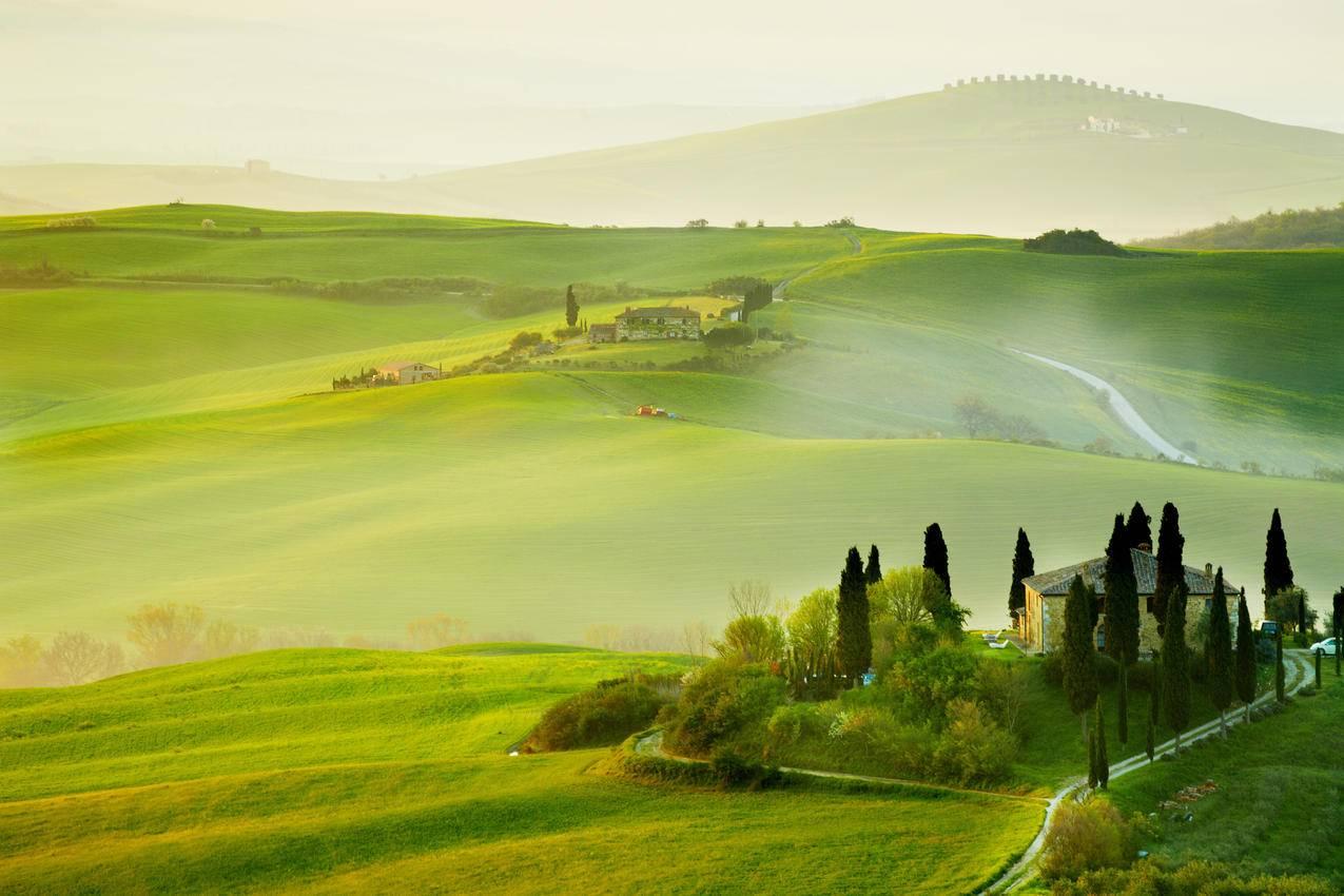 意大利托斯卡纳,夏天,农村,树道路5k风景壁纸图片