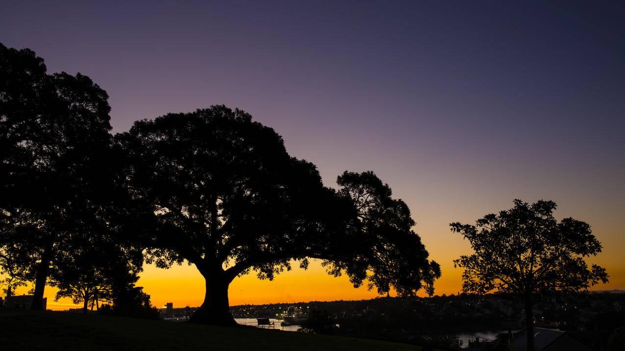 澳大利亚悉尼,天文台山日落,5K风景壁纸