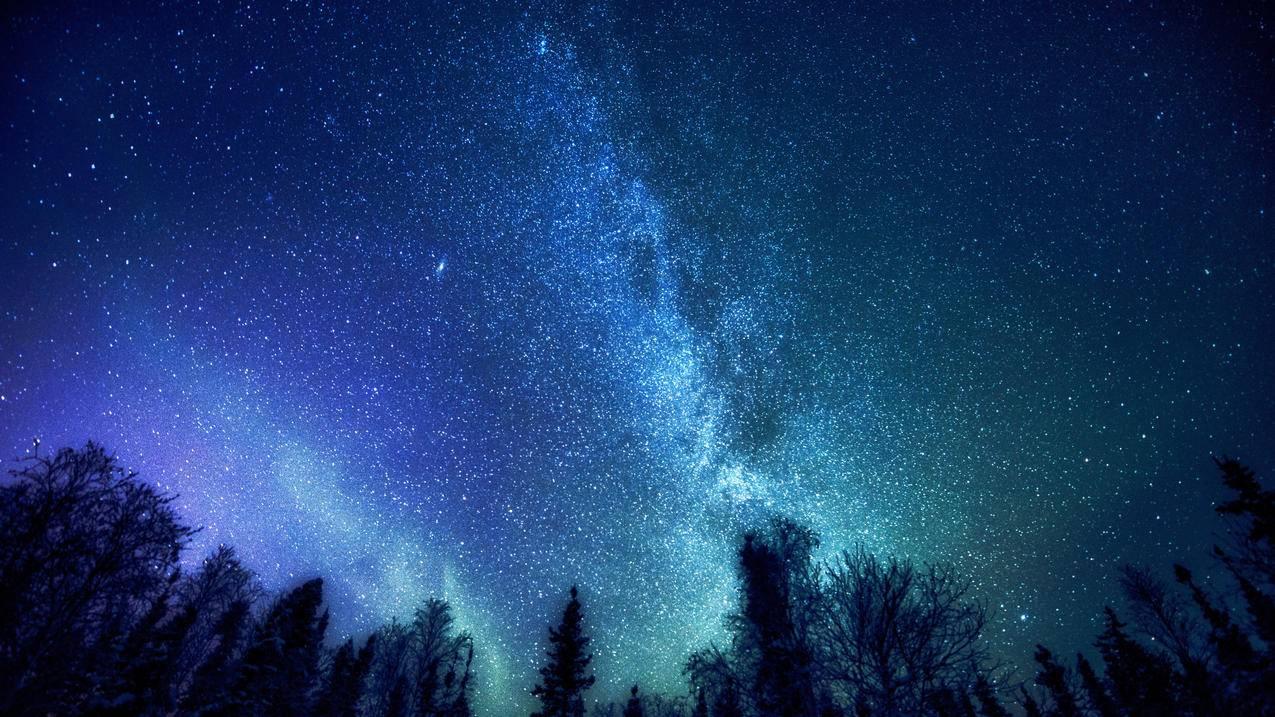 森林,树,神秘,银河系,星星,4K星空风景壁纸