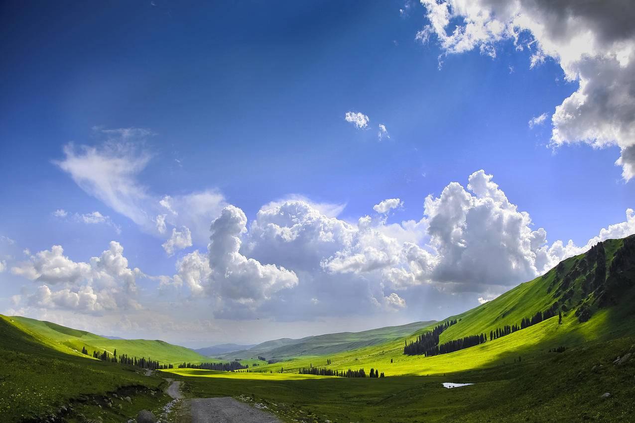美丽的蓝天草原新疆4k风景壁纸 千叶网