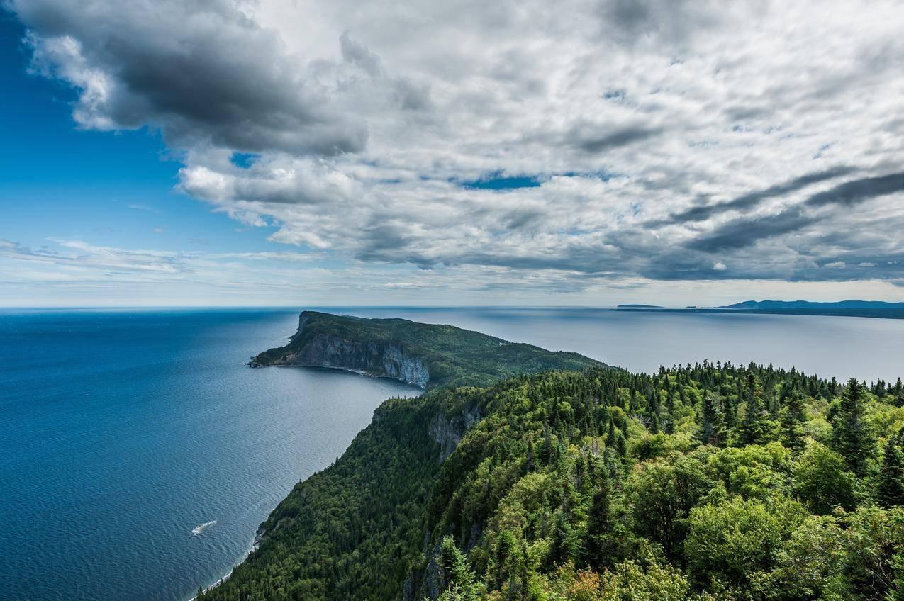 岩石,树,天空,4K风景图片