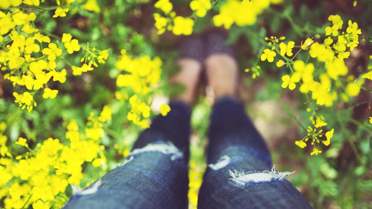 油菜花,女孩的腿高清4K桌面壁纸